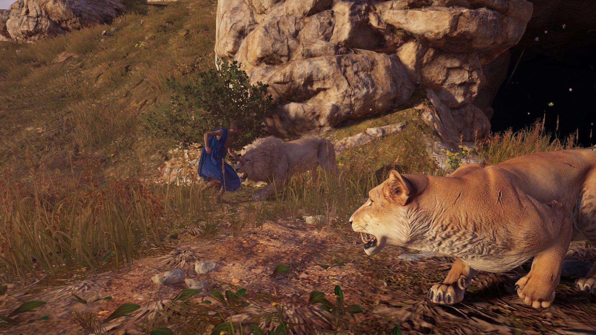 Feuer und Löwen